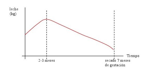 1_grafico