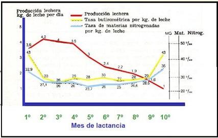 2_Grafico